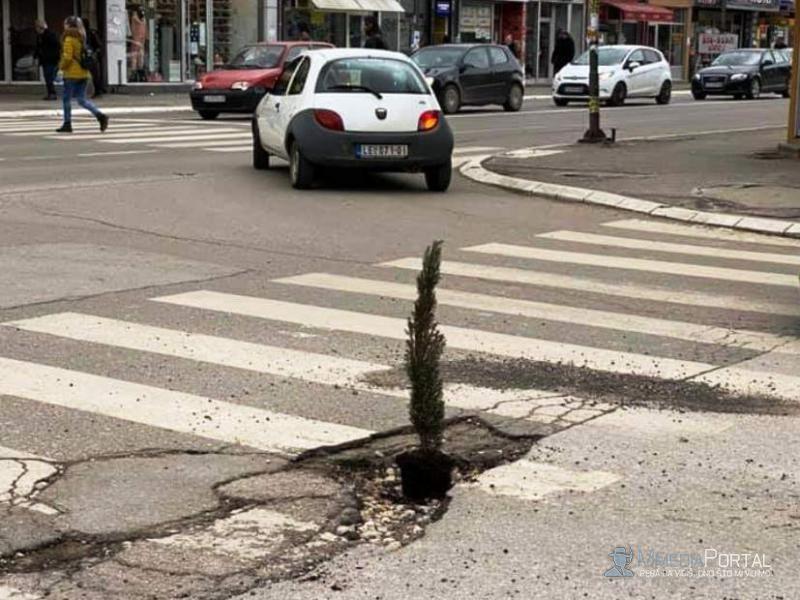 Leskovčanin zasadio drvo u rupi na ulici!