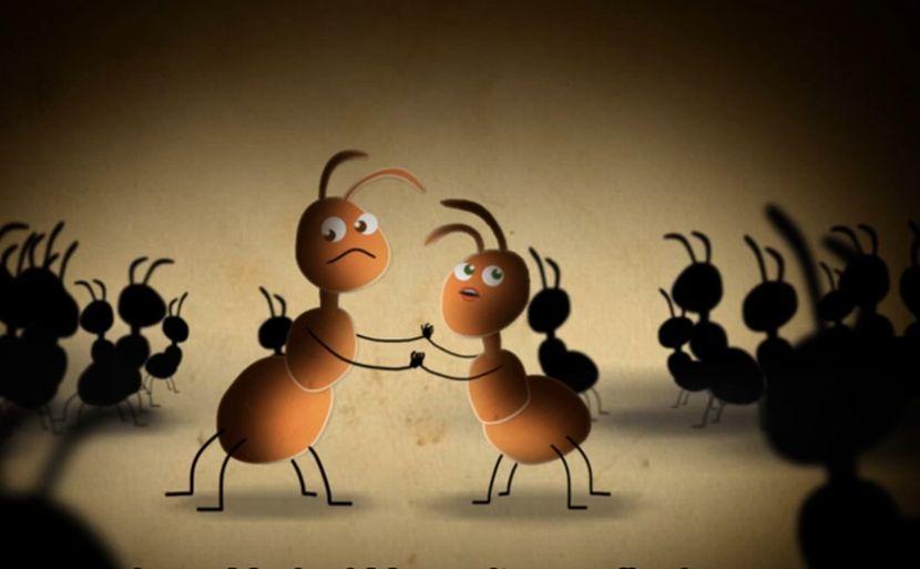 Saznajte na koju padne mrav kad se napije!?